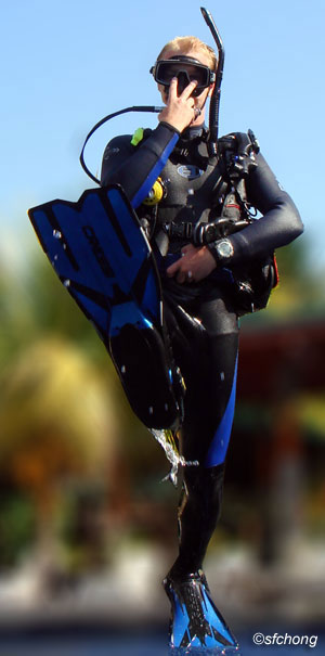 padi scuba diving instructor courses in Malaysia